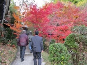 里山保全活動〜大阪みどりのトラスト協会さん来塾〜